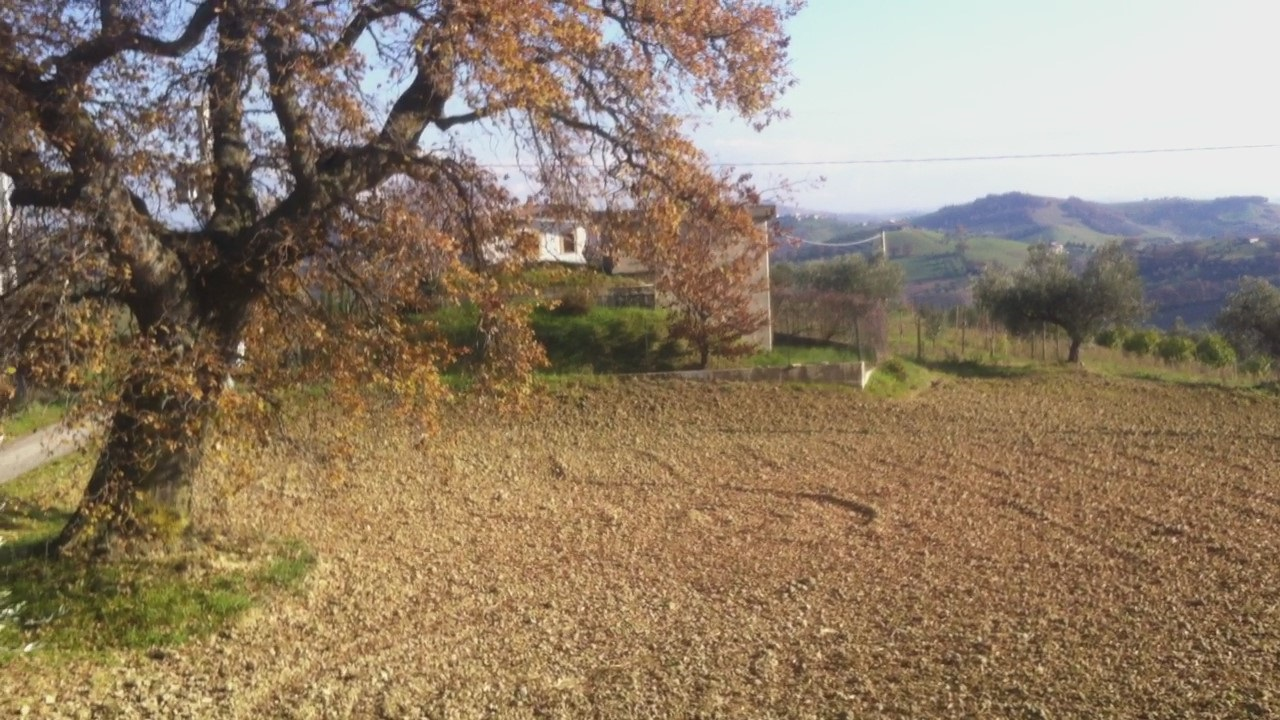Prezzo €. 190000 - Montefino - Cottage/Homestead/Country House